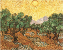 Olive Grove with Orange Sky