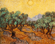Olive Trees with Yellow Sky and Sun